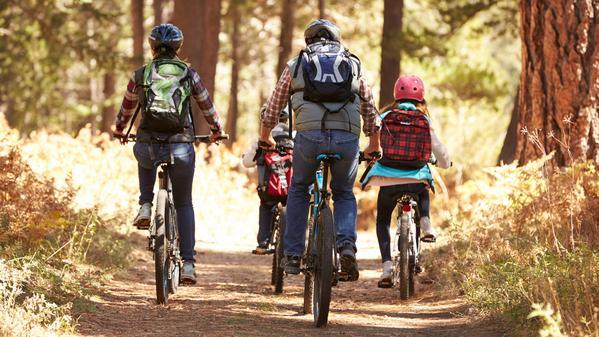 balade en vélo électrique dans la New Forest